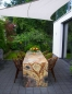 Preview: Dining table rainforest