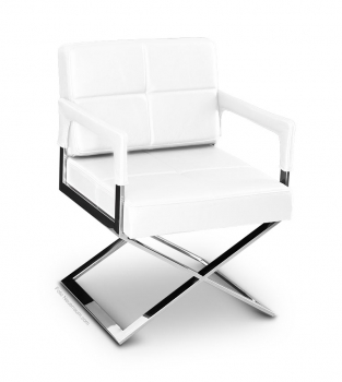 Leather dining / conference armchair polished steel frame. Illustration leather pure white.